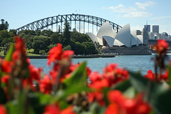 Sydney sees red (Rich007) Tags: city bridge flowers trees red summer music plants cloud sun building tree art nature water sunshine gardens architecture clouds seashells skyscraper 1932 buildings river wings opera december day skyscrapers harbour sydney sails australia nuns clear nsw newsouthwales operahouse jornutzon 1973 sydneyharbour botanicgardens royalbotanicgardens sydneyoperahouse sydneyharbourbridge 1924 bennelong bennelongpoint jacklang headdresses firstfleet thecoathanger eora thenewguard allaustralianbridge dormanlongco francisdegroot thenunsscrums