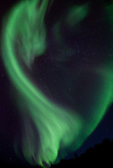 The Dragon (davebrosha) Tags: vertical fire dragon magic images astrophotography aurora northwestterritories northernlights auroraborealis nigh yellowknife nighscape top20aurora top20aurora20