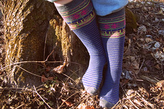 Saturday Morning Socks (zebramermaid) Tags: blue tree leaves socks stripes gray kneehigh