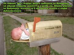 Romani 12-01 (Palosi Marton) Tags: kids childrens copii crestine versete biblice