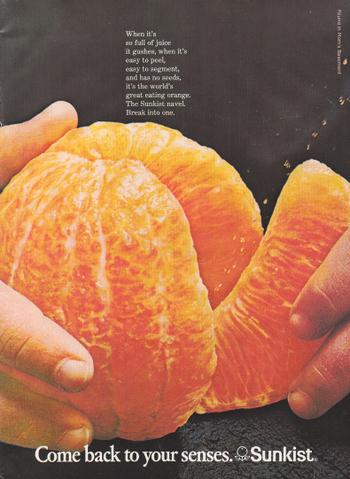 1971_vintage_sunkist_ad