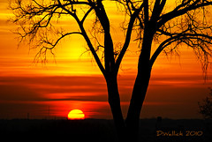 Sundown Delight (Doug Wallick) Tags: park trees sunset cemetery minnesota silhouette colorful sundown north minneapolis east hillside overlook picnik lightroom sundowner a230 mygearandmepremium mygearandmebronze mygearandmesilver mygearandmegold