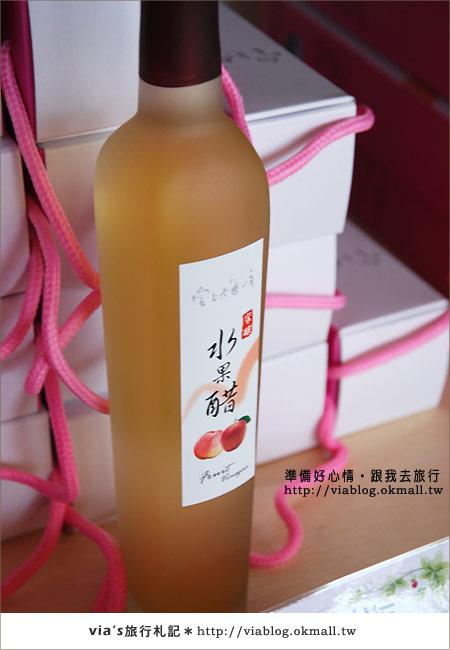 【梅峰農場】不止桃花美!梅峰農場賞花趣~(下)55