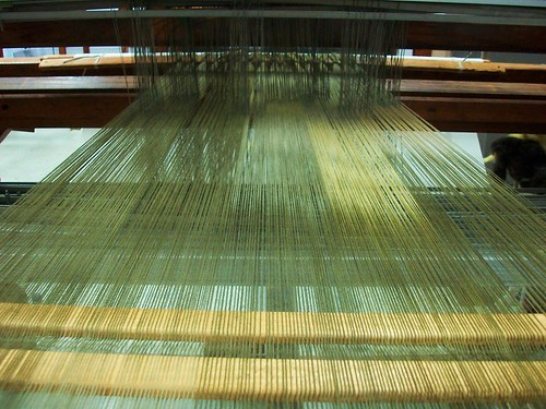 warps on the loom