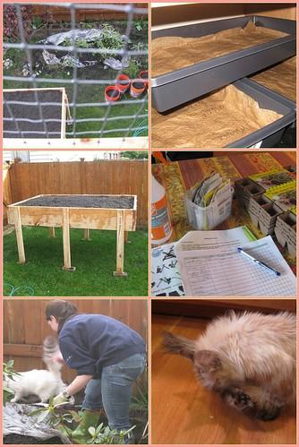 Gardening Gone Gaga!