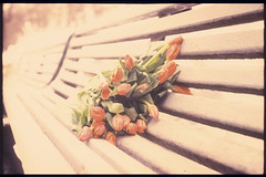 that's all abt broken flowers (ne_ptica) Tags: city film felix moscow crossprocessing positive 135 fed naturemorte brokenflowers coldlightofmorning nomoreme dobroeutro