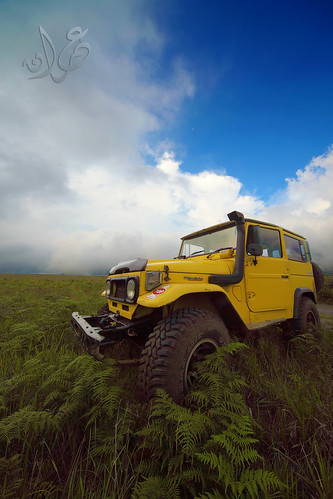 Our Bromo Jeep