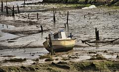 Estragos de la Tormenta (CJ_Photography) Tags: photoshop canon eos boat barca paisaje ruinas 7d cadiz tormenta contraste sanfernando barro cs4 fango