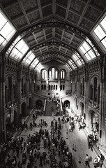 The Central Hall (GarySmith70) Tags: bw london architecture geotagged mono nikon kensington naturalhistorymuseum 1020 centralhall d40 geo:lon=0176446 geo:lat=51496333