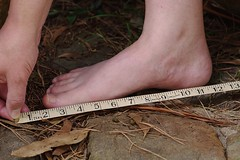 One foot is how many inches?