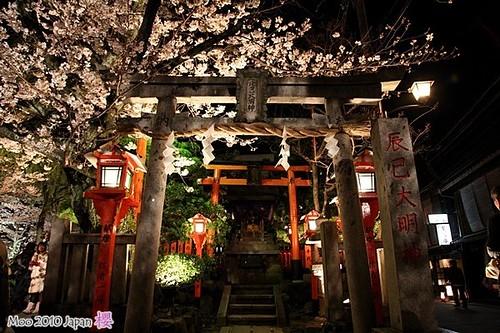 白川祇園-夜櫻13