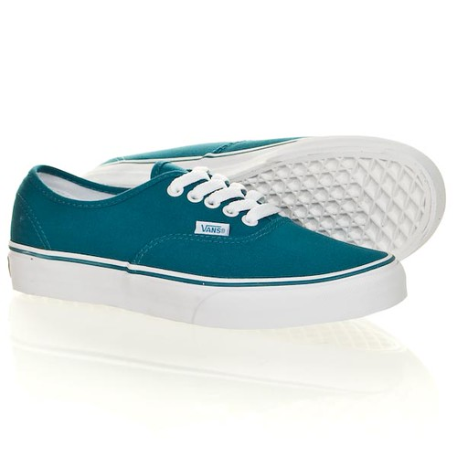 vans canvas skate shoes