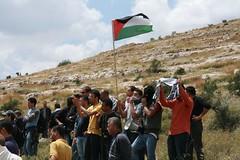 Demonstrating (LisaG in the world) Tags: saleh nabih