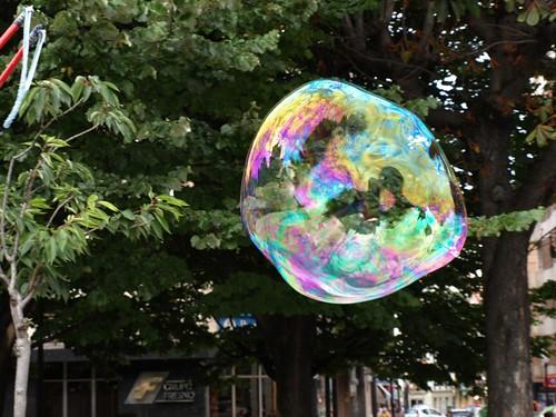 La burbuja 5