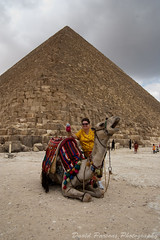 Lauri, the Bean, a camel, and Khufu's Pyramid (alohadave) Tags: africa people memphis egypt places cairo pyramids  heliopolis gizaplateau pyramidsofgiza alqahira alaskar alfustat pentaxk100dsuper babyloninegypt smcpda1645mmf40edal beantownbean alqataei