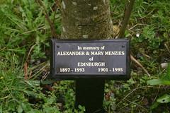 Tree in Memory of Alexander & Mary Menzies of Edinburgh 1897-1993 ans 1901-1995