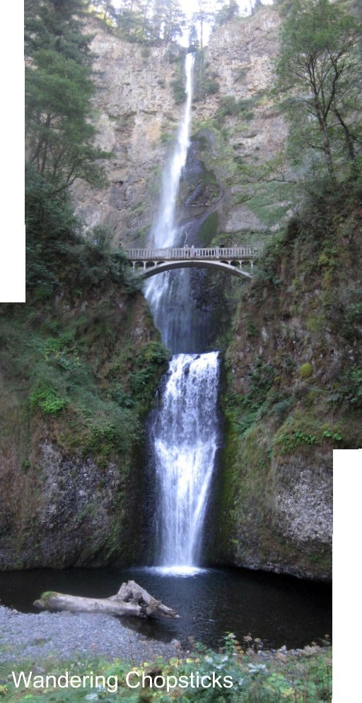 Day 4.3 Multnomah Falls - Columbia River Gorge - Oregon 6