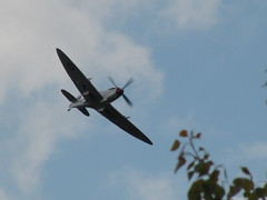 Spitfire at Thundersprint 2010 (Alex Staniforth: Wildlife/Nature Photography) Tags: alex force air casio airshow spitfire staniforth exfh20