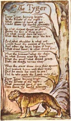 William Blake fearful symmetry