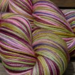 ~Sugarplum Fairy~ Jubilee SW Merino