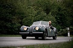 jaguar (misseeuw nico) Tags: france jaguar classiccars cassel 2010 140 xk xk140