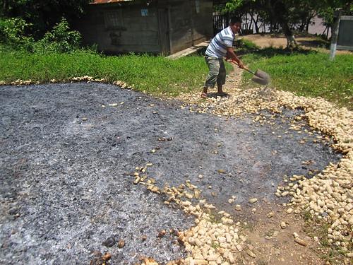 Tikal 02 - Burning corn in La Tecnica