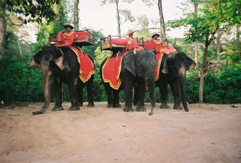 柬埔寨03