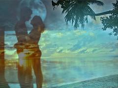 Pudimos ser animales, y elegimos solo ser... humanos!!... (conejo721*) Tags: argentina atardecer mar mujer playa palmeras luna cielo ocaso hombre palabras mardelplata sentimiento poesía poema serhumano conejo721
