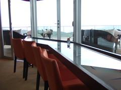 海の見える杜美術館 広島 画像19