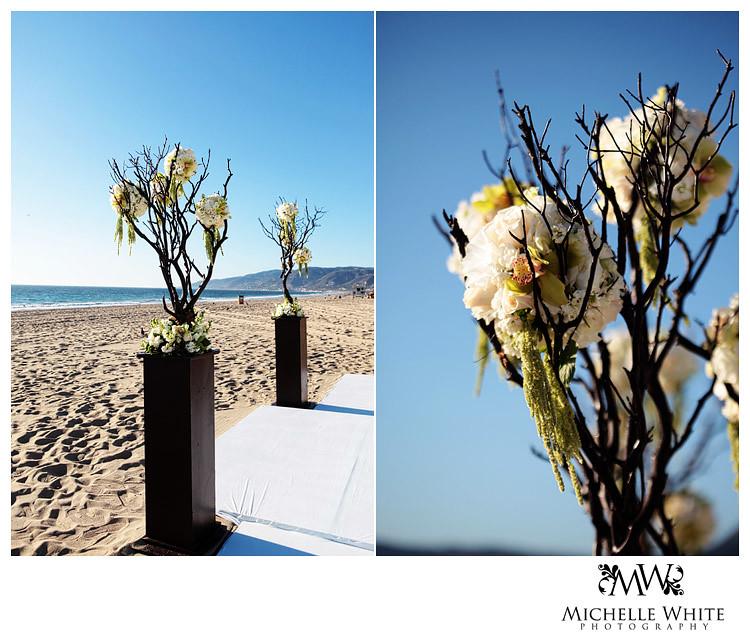 flowers_IMG_7389