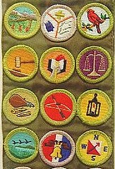 Merit Badges1