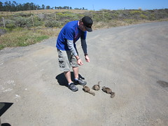 Tim was like Dr. Doolittle for the ground squirrels. (06/06/2010)