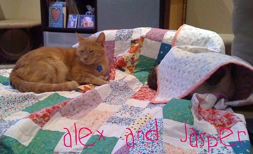 alex and jasper
