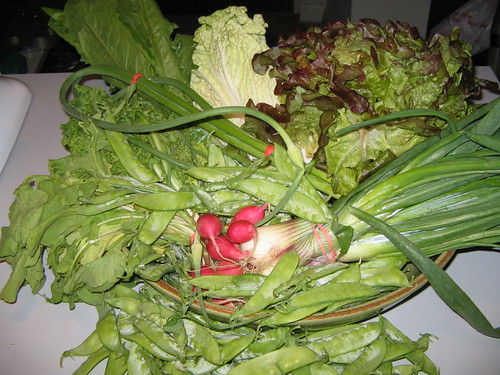 3rd Lancaster Farm Fresh CSA Share