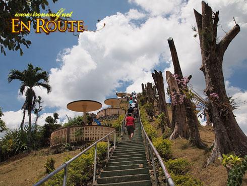 Bohol Chocolate Hills Stairs