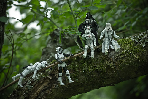 Projekt 52/2010, Woche 24: Ein … steht im Walde…
