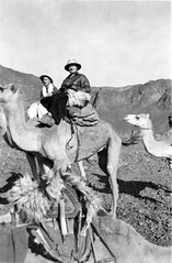 Camel transport during World War II (gbaku) Tags: world pictures africa 2 history photo scenery war desert photos african north picture historic camel photographs photograph ii afrika historical camels africain afrique geschichte africaine classicblackwhite afrikas