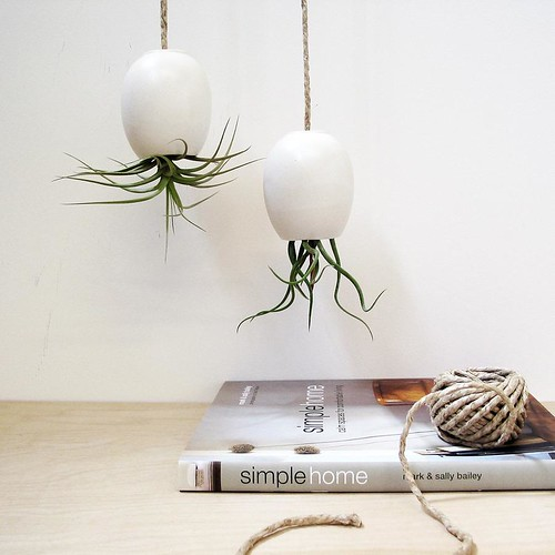 matte white hanging air plant pods