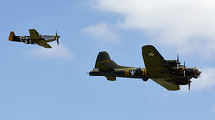 B-17 & Mustang (Bernie Condon) Tags: b17 boeing flyingfortress bomber ww2 usaaf us military warplane vintage preserved sallyb uk british shuttleworth collection oldwarden airfield airshow display aviation aircraft plane flying mustang northamerican classic fighter p51