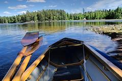Schweden Kanu (Daisy Dagoberta) Tags: swedenschwedenwaterwasser kanu faltbootkolibritravelnature