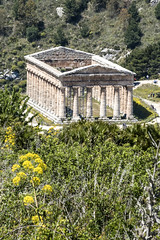from above (the-father) Tags: temple greece segeste sicily italy