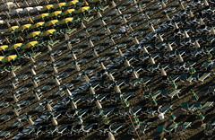 Shot from above (carloancona) Tags: flickrfriday shotfromabove