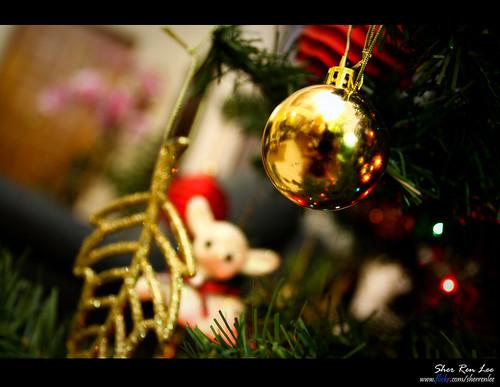Christmas Season =)
