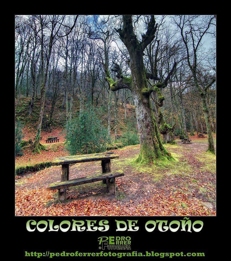 Colores de Otoño - El cazador de bancos - Bench Hunter Part XVIII