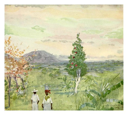 029-Por la tarde despues de la lluvia en Jamaica-The West Indies 1905- Ilustrations Archibald Stevenson Forrest