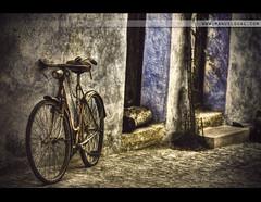 Cycle Vintage (by Manuel Gual)