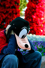 Goofy was pooped out. (chanchan222) Tags: christmas goofy epcot disney disneyworld goofyhat danchan danielchan chanchan222 ethanandrewchan wwwchanofamericacom chanwaibun