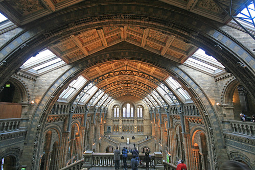 The Great Hall, Natural History Museum