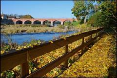151 (Bargais) Tags: bridge autumn brick yellow river sunny latvia leafs venta latvija kuldiga lapas dzeltens tilts kuldīga