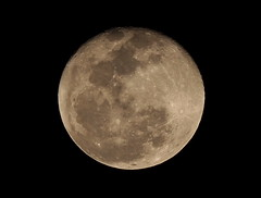 New Year Moon: 1/1/2010